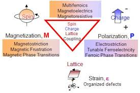 Multiferroic Compounds